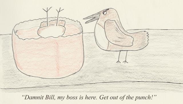 bird punch.jpg