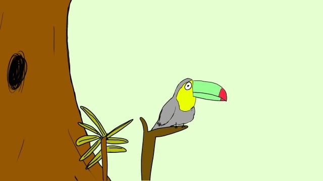 BIRD SOLO EYES AHEAD