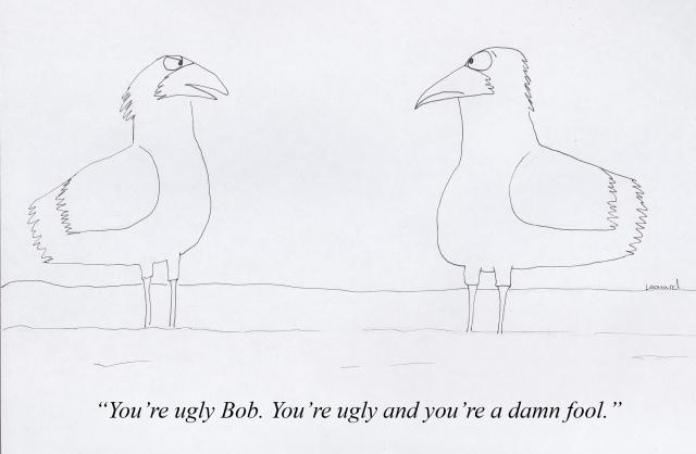bob_the_bird