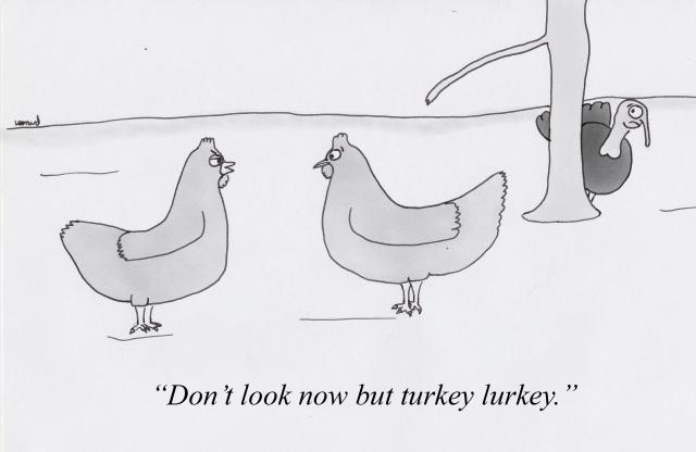 turkey_turkey.jpg