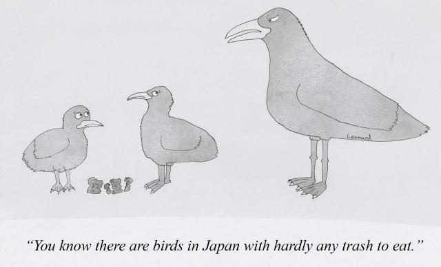 birds in japan 12-5-2017.jpg